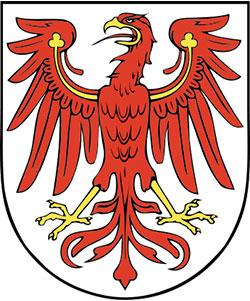 afi-auktionshaus-fuer-immobilien-immobilienmakler-kaufen-verkaufen-auktionen-bergisch-gladbach-immobilienverkauf-immobilienauktionen-hausverkauf-obis-concept-gummersbach-brandenburg